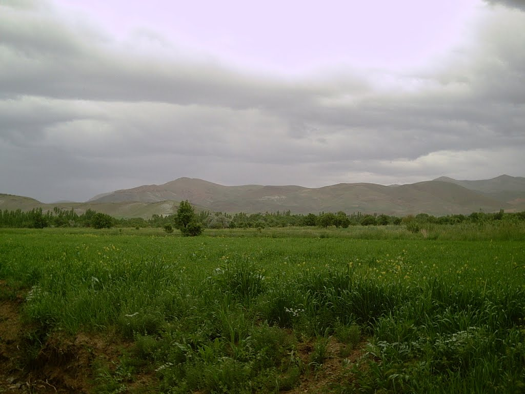 West Azerbaijan, روستای هولاسو، Unnamed Road, Iran