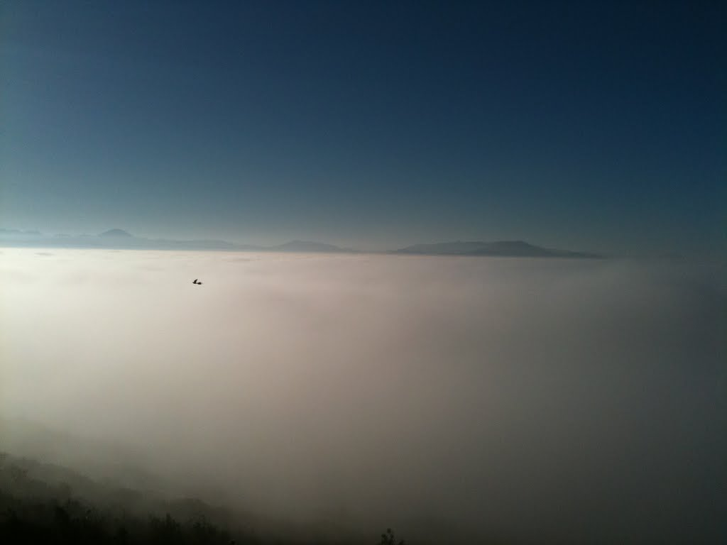 Top of Cowles Mountain above the clouds