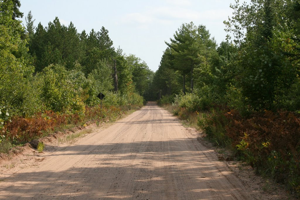Forest Road 2276