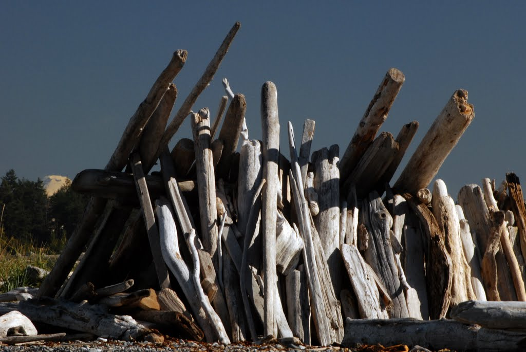 Driftwood House at Joseph Whidbey State Park