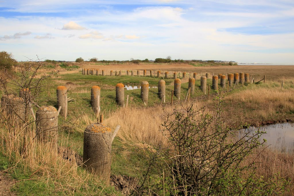 WW1 Defences, Pegwell Bay Nature Reserve, Ramsgate