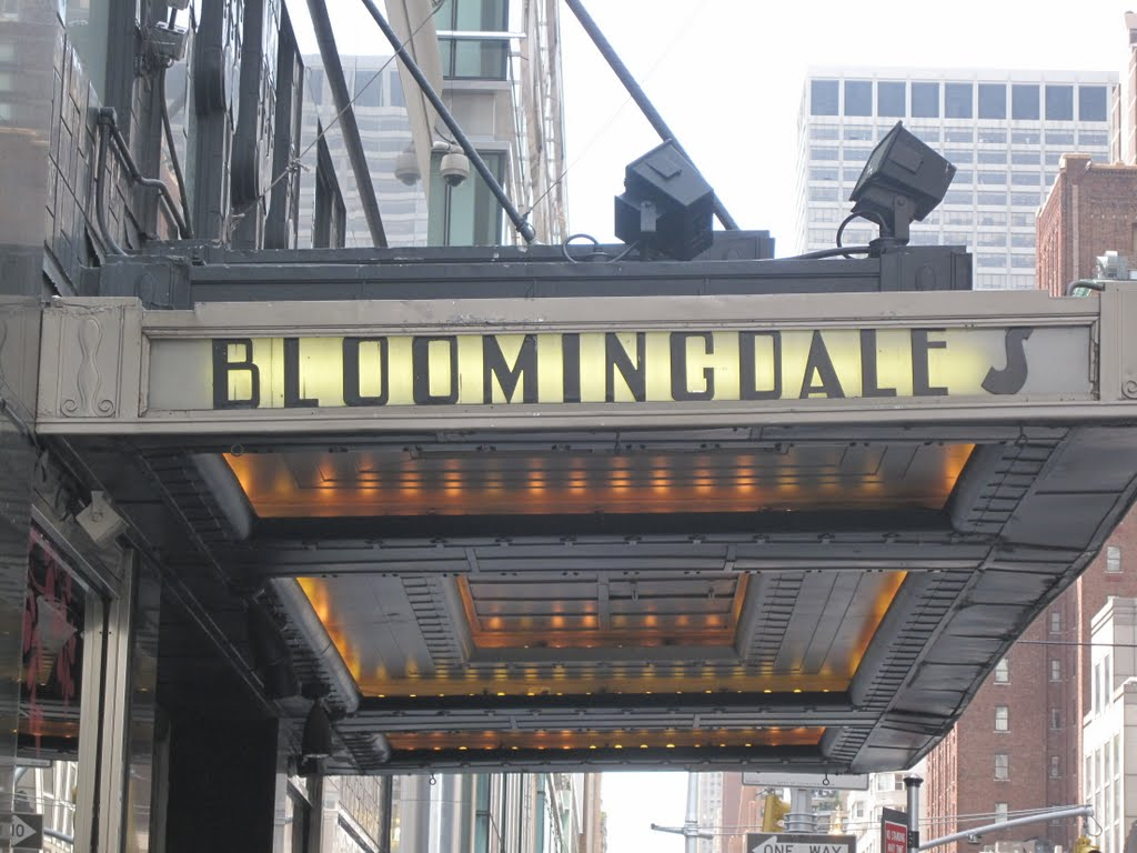 Bloomingdale Store1000 Third Avenue New YorkNY