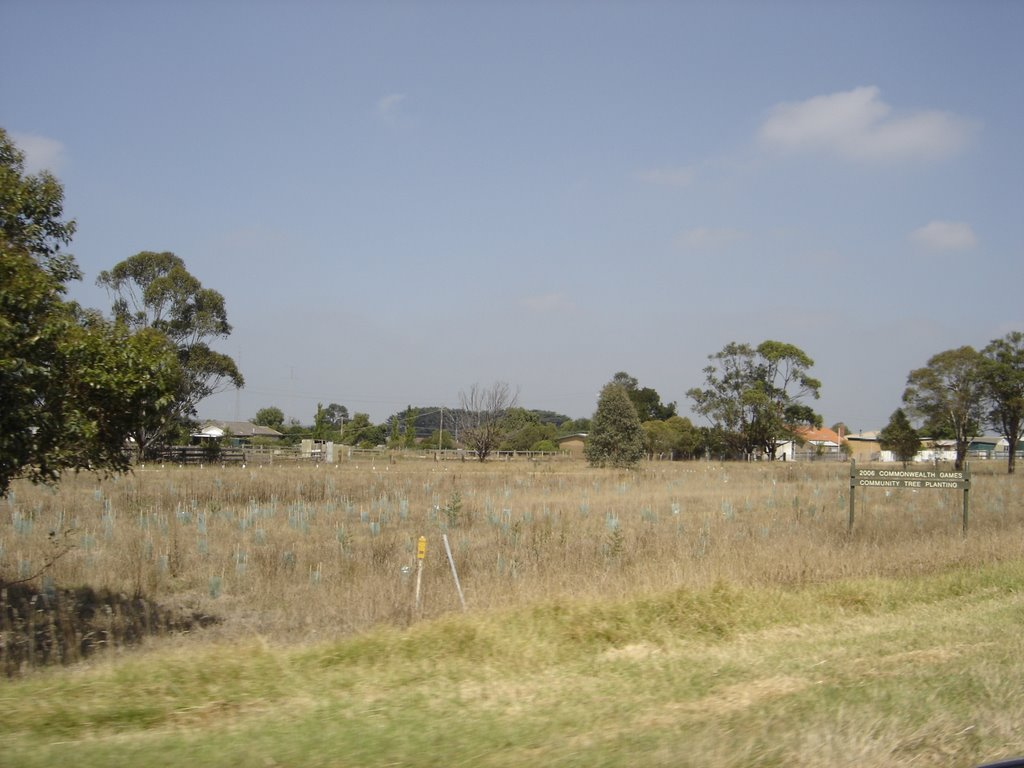 On the road to Maffra (C105)