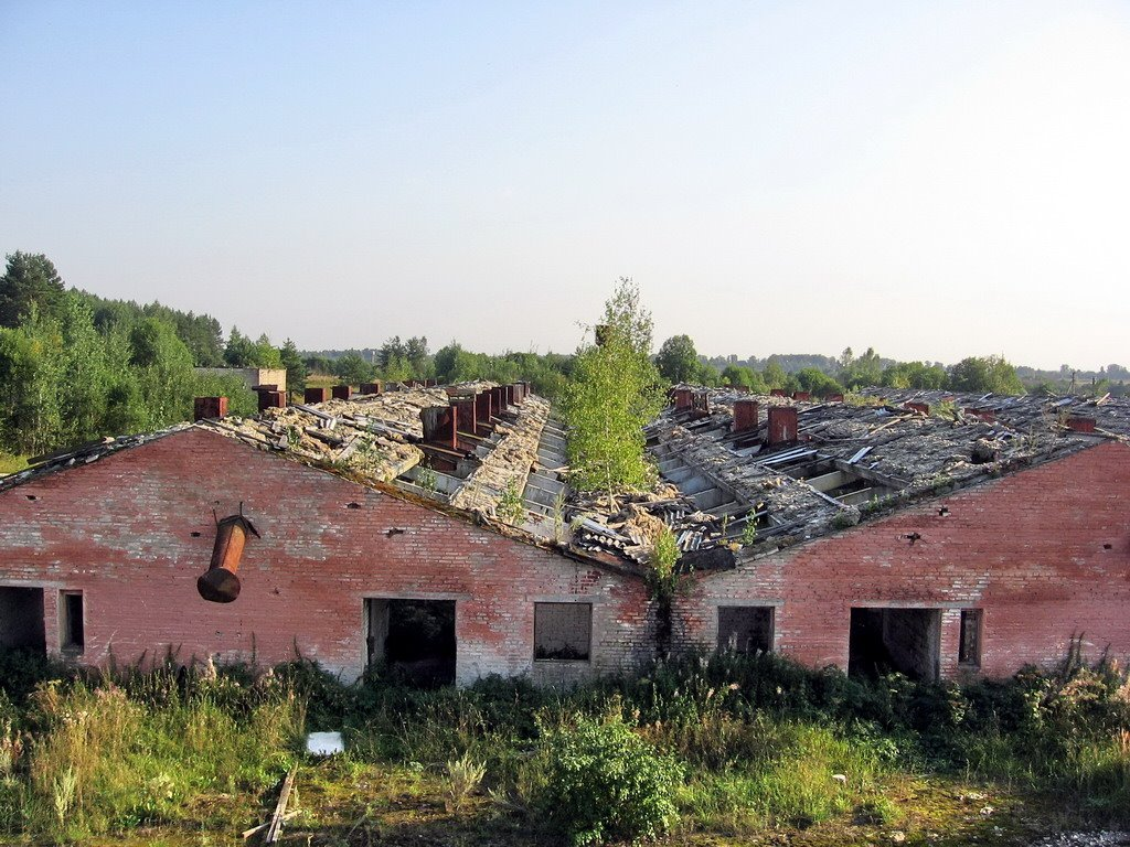The destroyed farm
