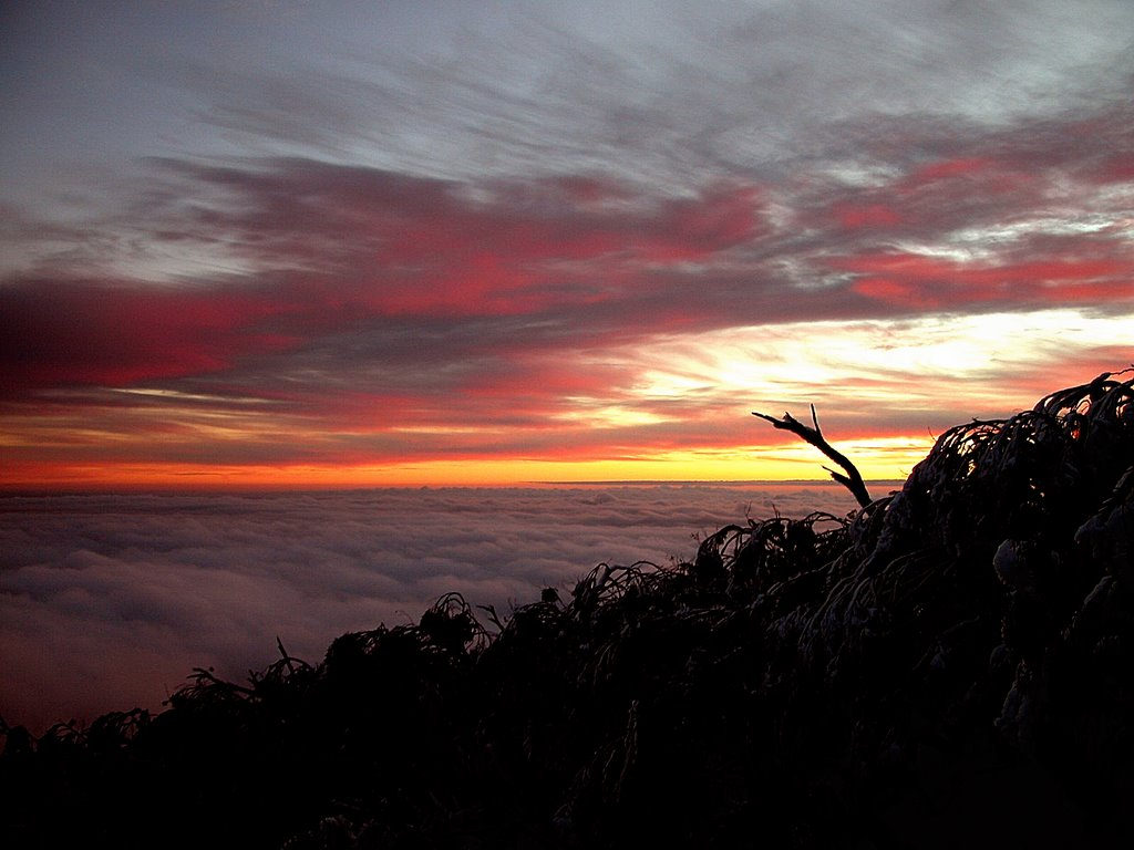 Sunset from Mt Baw Baw with low cloud over West Gippsland