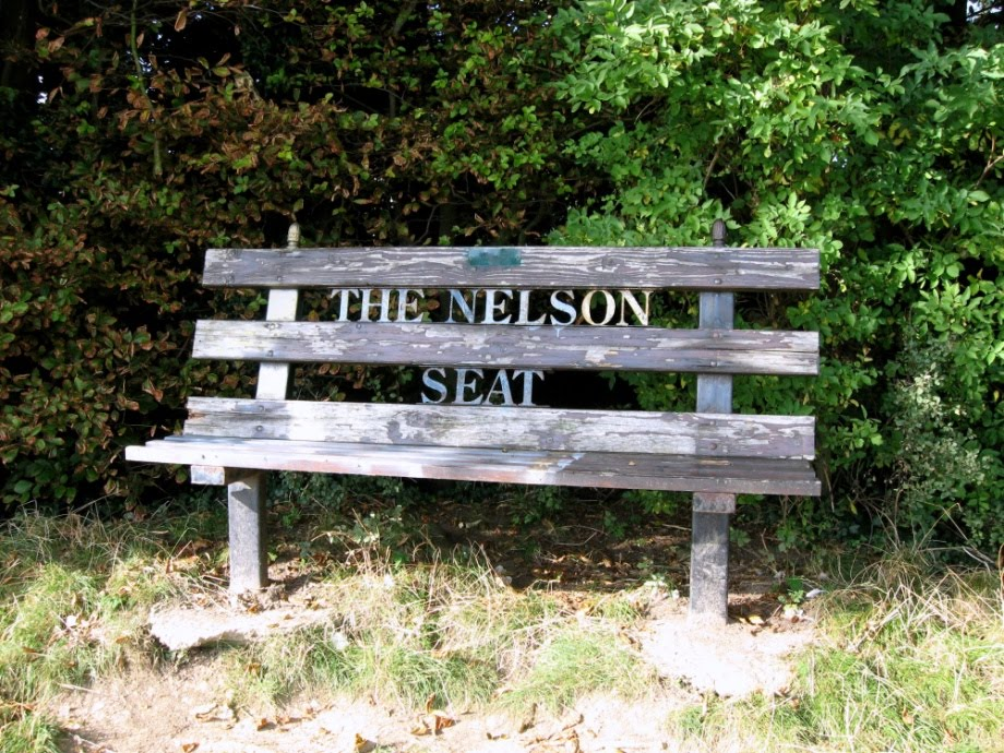 The Nelson Seat