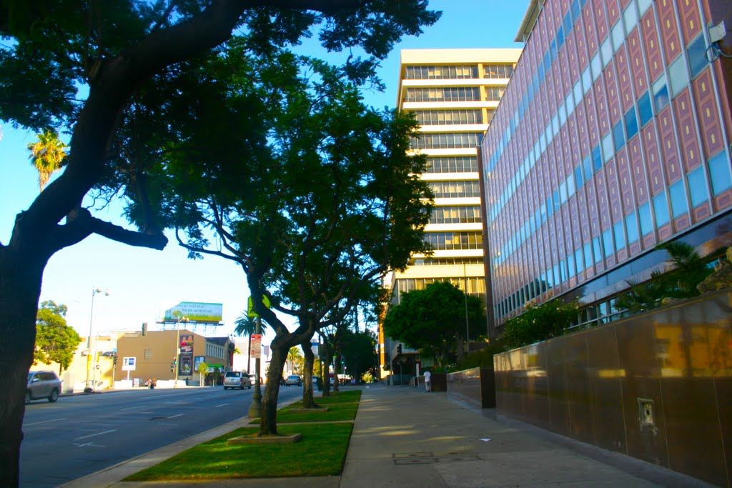 Sights and sites along The Wilshire Corridor, Los Angeles, CA