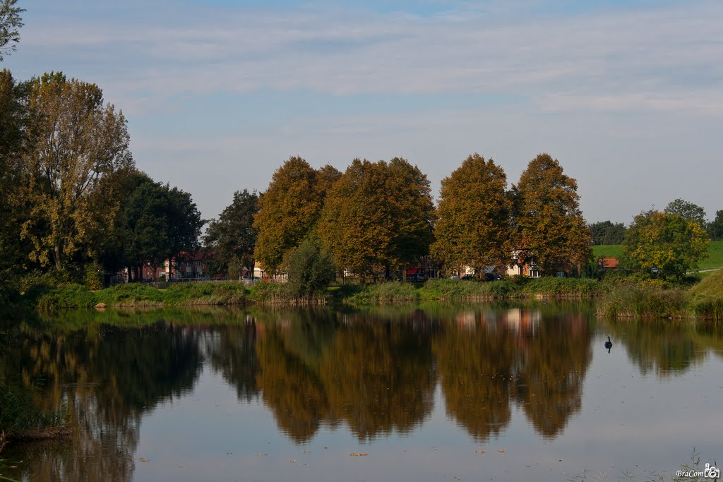 Autumn colors, Woudrichem