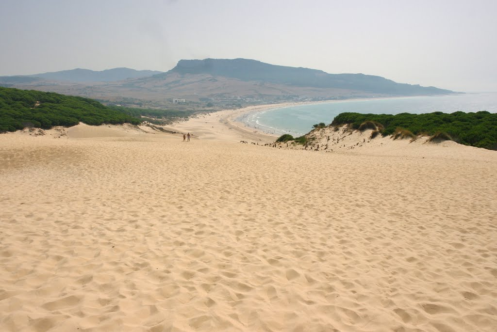 The dune in Bolonia