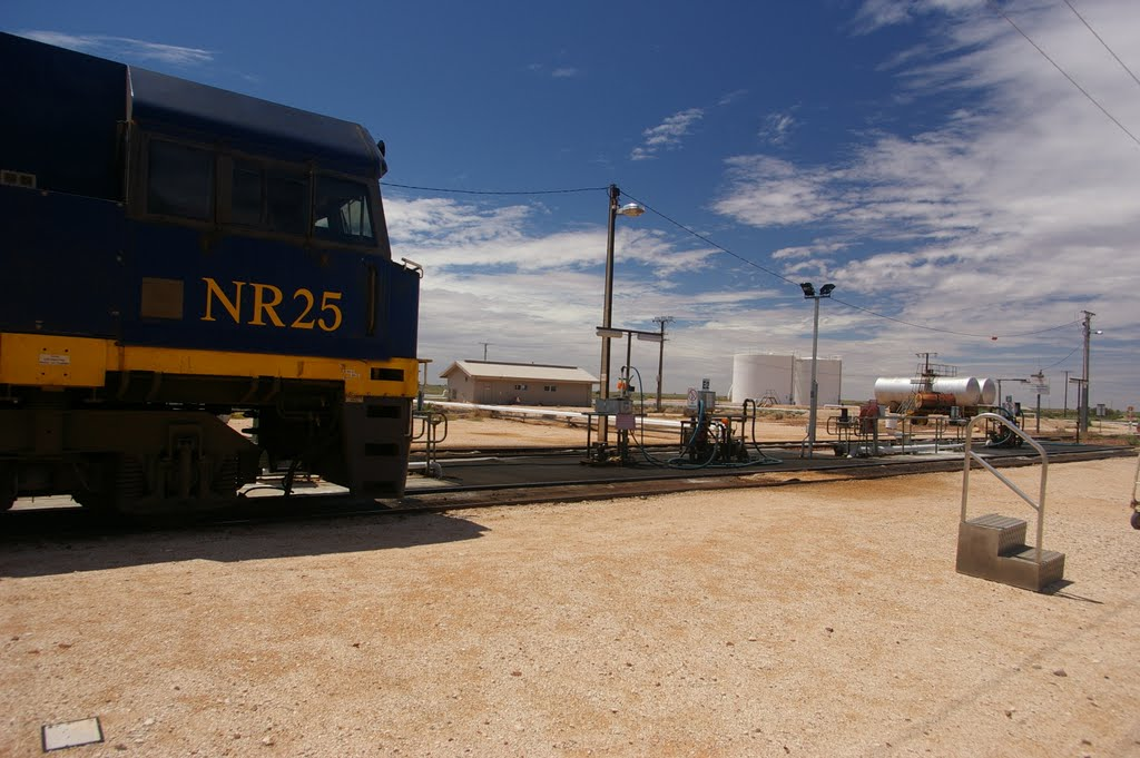 AUS, Indian Pacific Train at Cook, 2011