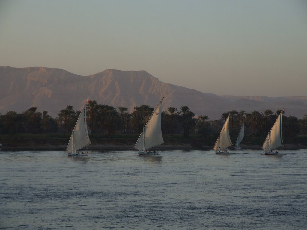Feluccas at Sunset