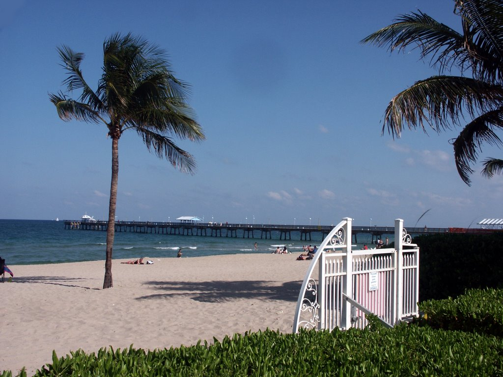 Driftwood, Lauderdale-by-the-Sea