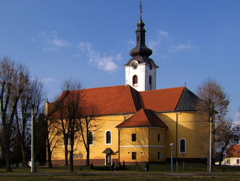 Church of St. Martin, view from South
