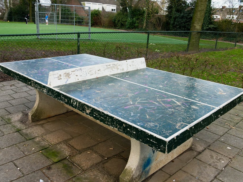 Ping pong table in Leeuwenkpark
