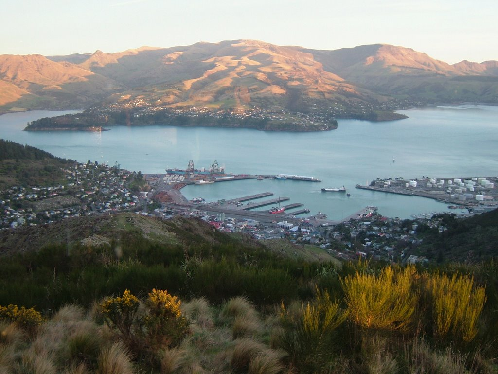 Lyttleton Harbour with Diamond Harbour in background