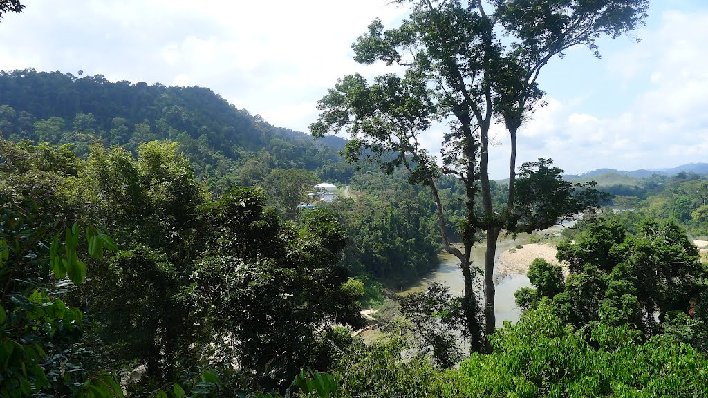 View to Tembelling River from Canopy Walk