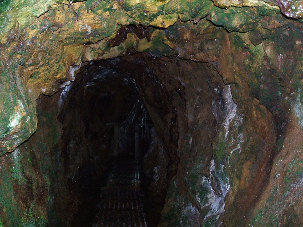 Entrance to abandoned mine-shaft on the track to Montezuma