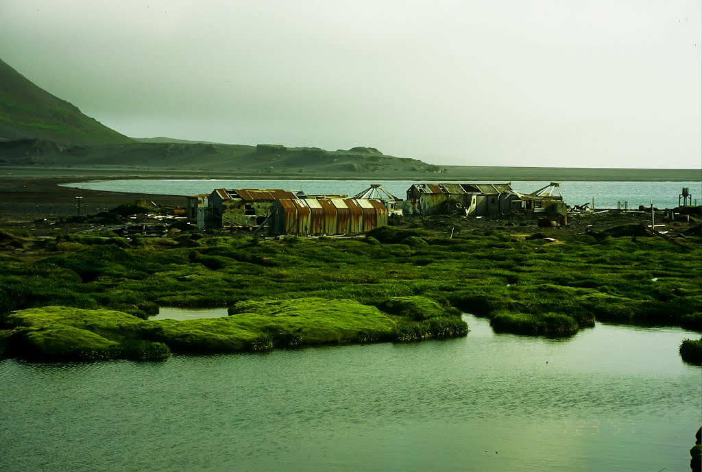 Remains of the old ANARE station on Heard Island.