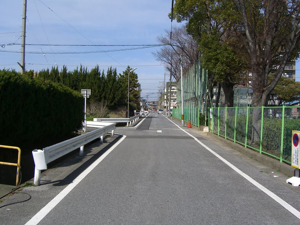 Detailed road