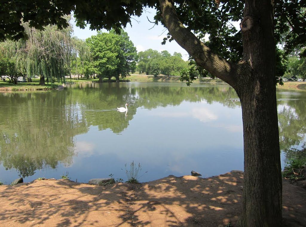 Pond in Yoctangee Park, Chillicothe Ohio