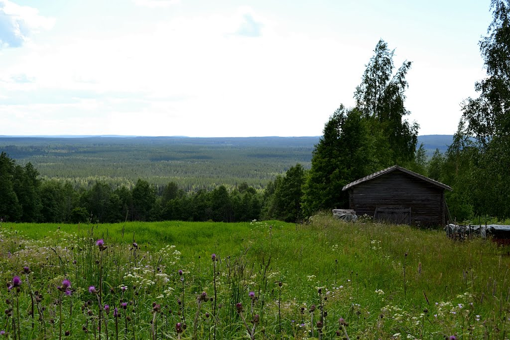 A summer scenery over meadows and forests westwards from Saukkovaara hill (Ristijärvi, 20120706)