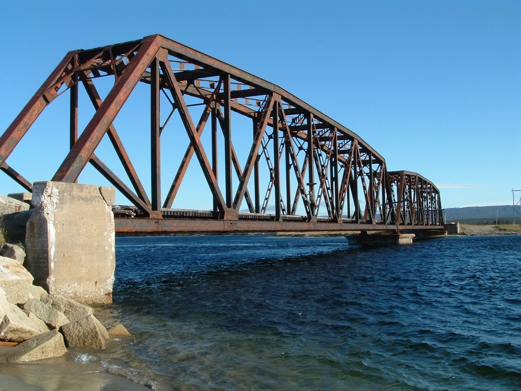 Web-based georeferenced 3d inspection and monitoring of bridges.
