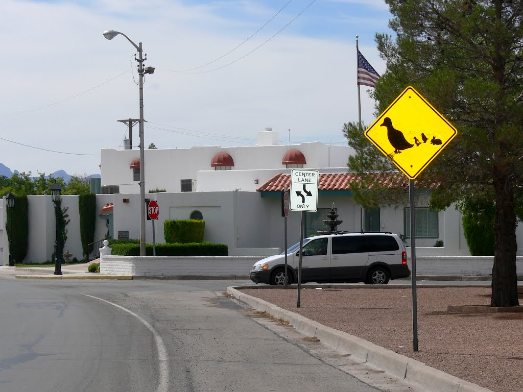 Duck and rabbit crossing, Deming, New Mexico