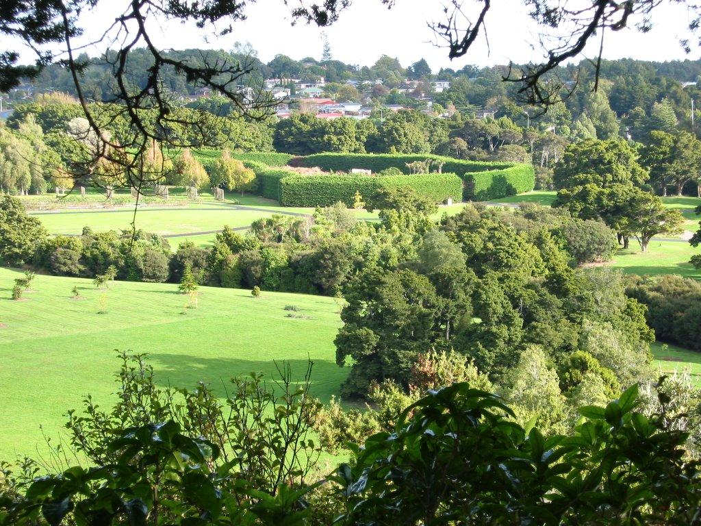 Looking over the Auckland botanical garden