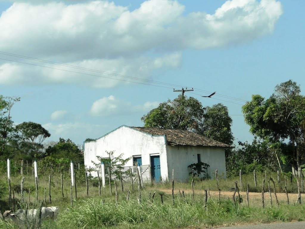 Housefarm beside BR101 road, near Cruz das Almas, Bahia, Brazil