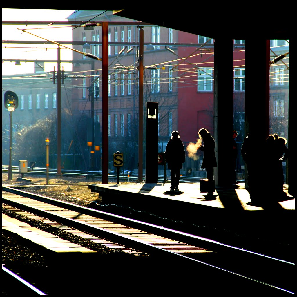 A Cold Morning - Odense Railway Station