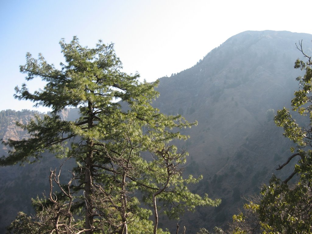 View of Mountains from Bhairon Track