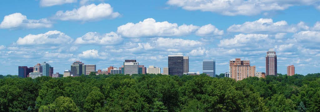 Clayton Panorama from Brentwood