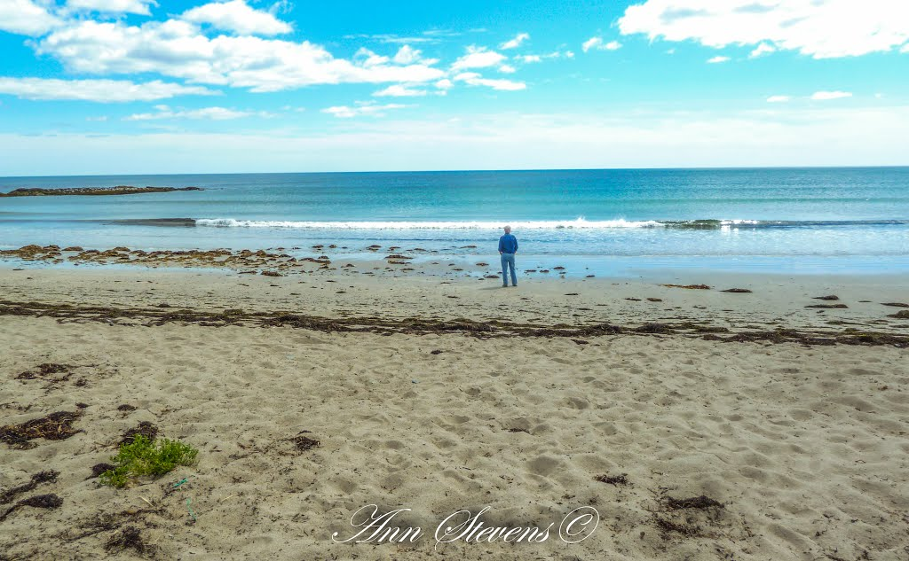 Canada's Ocean Playground- Martinique Beach - Nova Scotia | Mapio net